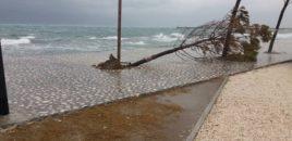 Vlora përfshihet nga stuhia tropikale. Video