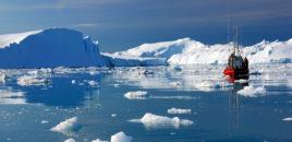 Bota në rrezik, akulli në Grenlandë po shkrin 4 herë më shpejt se në 2003