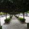 5,7 milionë euro për rehabilitimin e Bulevardit Zogu I, 600 metra i gjatë