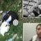 Del ekspertiza/ Admir Murataj është qëlluar nga(shokët) një distancë prej rreth 15 metrash.
