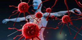 Ilaçi i ri që po vret qelizat e kancerit