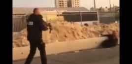 Video+18/ Momenti i ekzekutimit të një gruaje Palestineze nga ushtarët terroristë izraelian.
