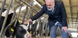 Rama inspekton me Sorecën  fermën e lopëve…